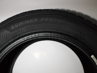 205/55 R16 PAXARO SUMMER PERFORMANCE [91] V